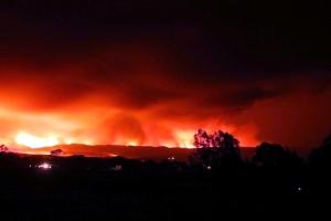 Bush Fires 2013