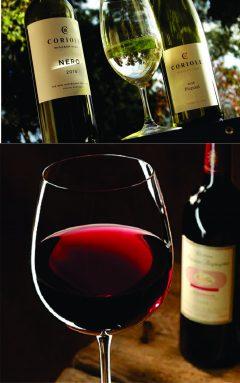 Aussie Wines1